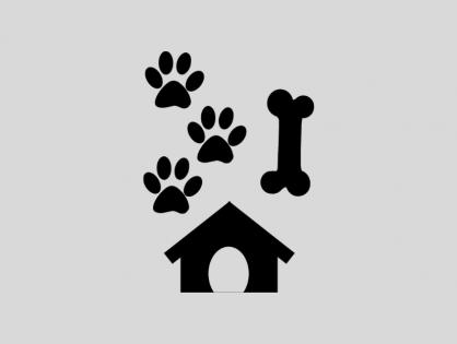 Zbiórka dla zwierząt